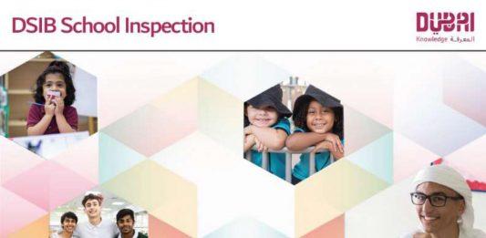 DSIB Inspections 2016-2017